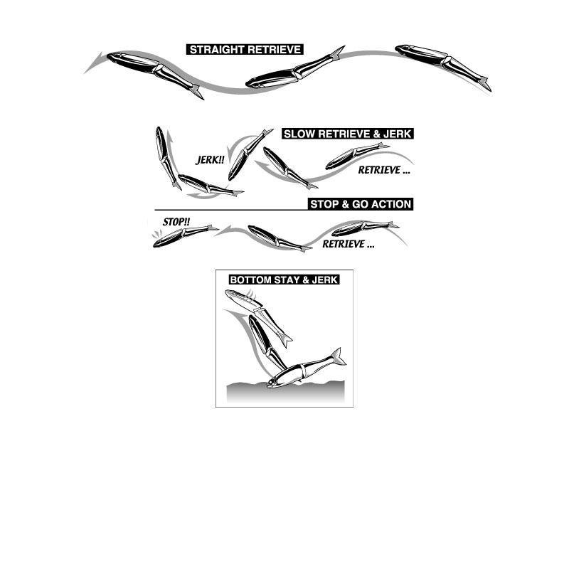 Gan Craft Jointed Claw Magnum 230 S #10 Seethrough Jya Ayu-1