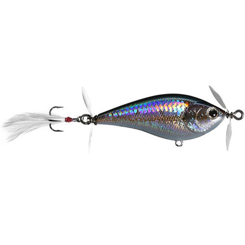 Lucky Craft Kelly J Topwater American Shad