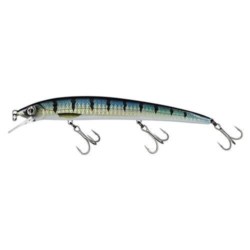 Molix Finder Jerk 150 Barracuda